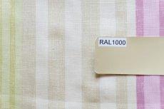 画像12: 「F在庫」はぎれ68×50:バーリントン(ストライプ、濃いピンク・グリーン) (12)