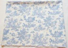 画像1: 「J即納/F在庫」はぎれ70×50:ミニパストラル(ブルー、小柄)/60g (1)