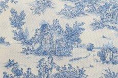 画像11: 「J即納/F在庫」はぎれ70×50:ミニパストラル(ブルー、小柄)/60g (11)