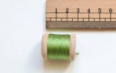 画像2: 「移動中」絹糸:AU VER A SOIE (色番号659:アニスグリーン)16m /30g (2)