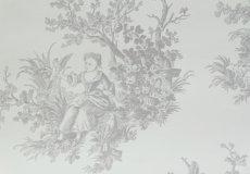 画像9: 【送料込み】「即納F」壁紙:tdjプロヴァンス(グレイ)10m巻き /1400g (9)