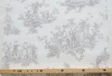 画像2: 【送料込み】「即納F」壁紙:tdjプロヴァンス(グレイ)10m巻き /1400g (2)