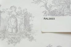 画像5: 【送料込み】「即納F」壁紙:tdjプロヴァンス(グレイ)10m巻き /1400g (5)