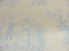 画像3: 【送料込み】「即納F」壁紙:tdjプロヴァンス(水色)10m巻き /1400g (3)
