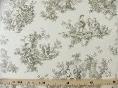 画像5: 【送料込み】「即納F」壁紙:tdjプロヴァンス(黒)10m巻き /1400g (5)