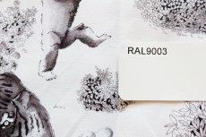 画像19: 「即納F」はぎれ70×50:ワイルド(クリームベース黒)/105g (19)