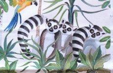 画像13: 「取寄せ」布:ジャングル(クリームベース) (13)