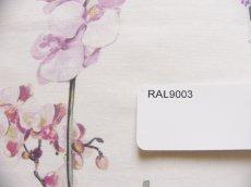 画像13: 「移動中」はぎれ68x50:ハミングバード(ホワイトベース、ピンク・イエロー・モーヴ)/100g (13)