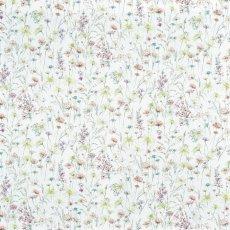 画像1: 「即納F」はぎれ69×50:マリー(ブロッサム)/100g (1)