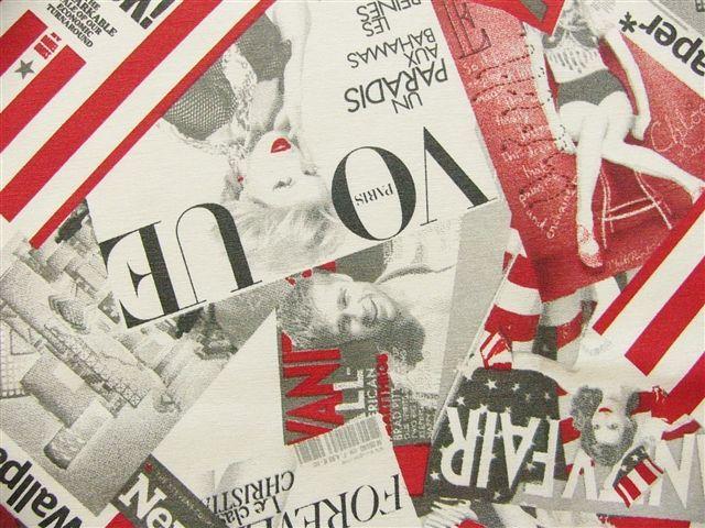 画像1: 「即納F」はぎれ70x50:ジュルノー(赤・グレー)/ 80g (1)